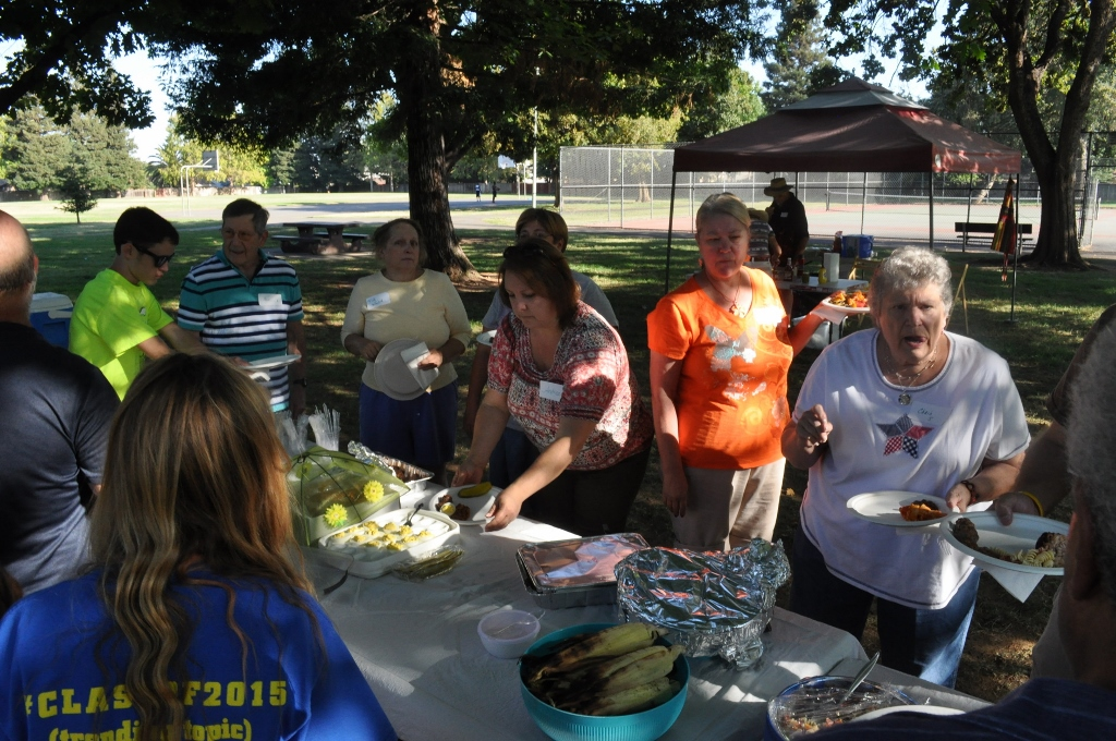 BRECA - Potluck In The Park - 2015 - Food