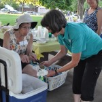 BRECA Picnic In The Park 2012 - Ice cream and adults