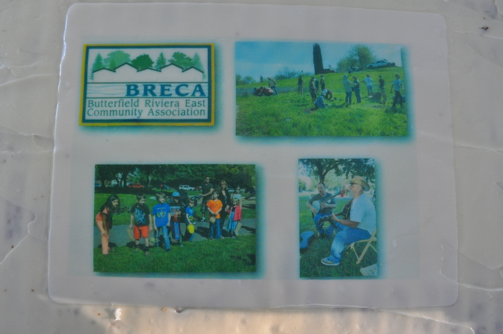 BRECA - Potluck In The Park - 2015 - That's a Cake