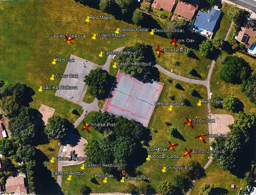 Tree plan - Riviera East Park
